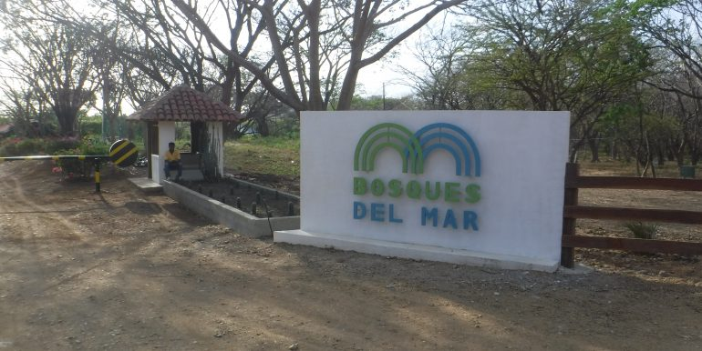 Bosque del Mar