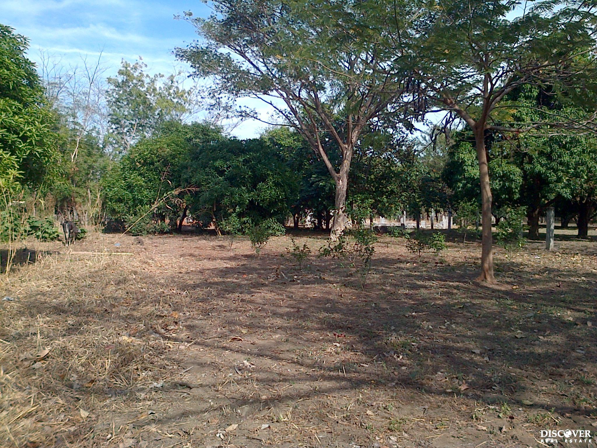 633 Acres of Raw Land Ready for your Dream Development