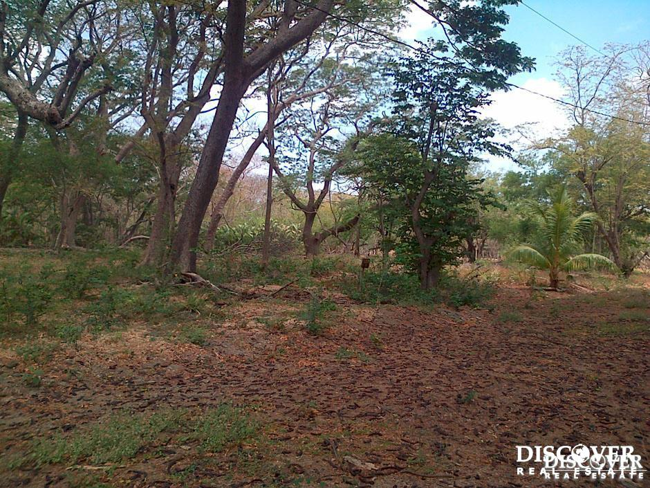 Perfect Lots for Developing in Bosques del Mar