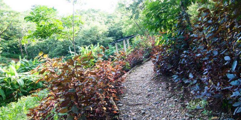 cabana-jungle trail