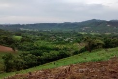 17 Manzana Estate in Las Delicias