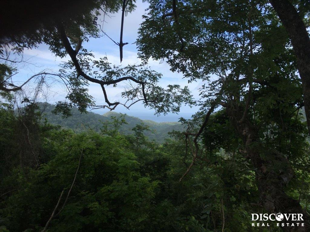 136 Acres of Lush Green Forest Near Playa Hermosa