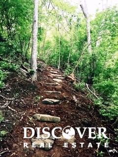 steps through the jungle