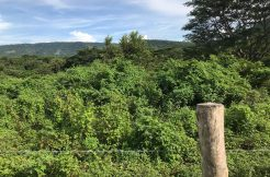 Flat Two Manzana Lot for Sale in Las Delicias