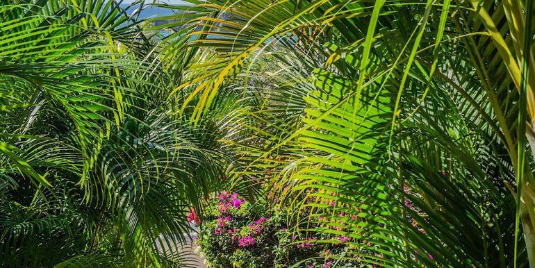 Estudio Rio Jaio Garden