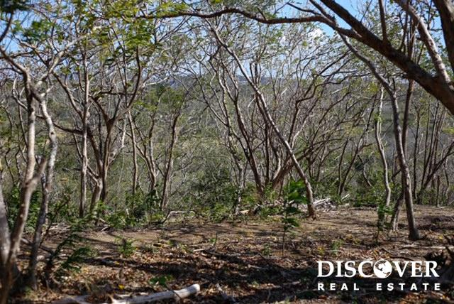 Playa Maderas Bargain – 3.1 Acre Property