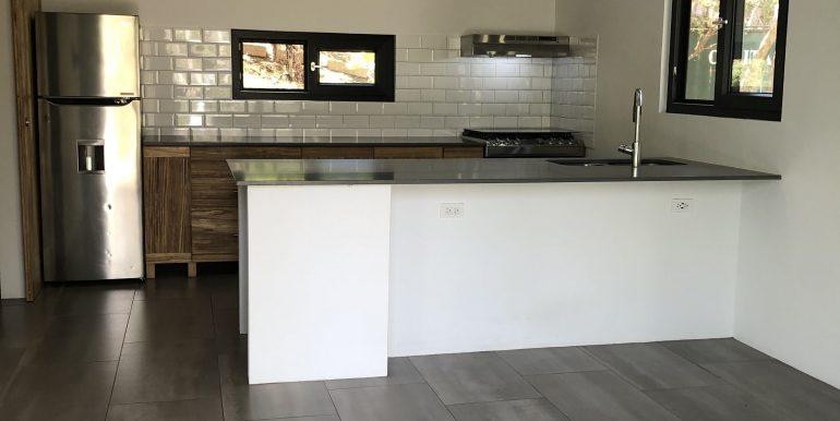 Forest House kitchen