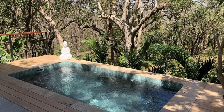 Forest House pool