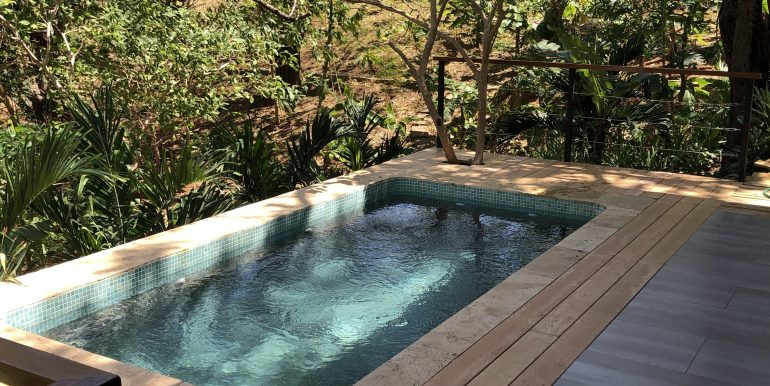 Forest House pool and patio