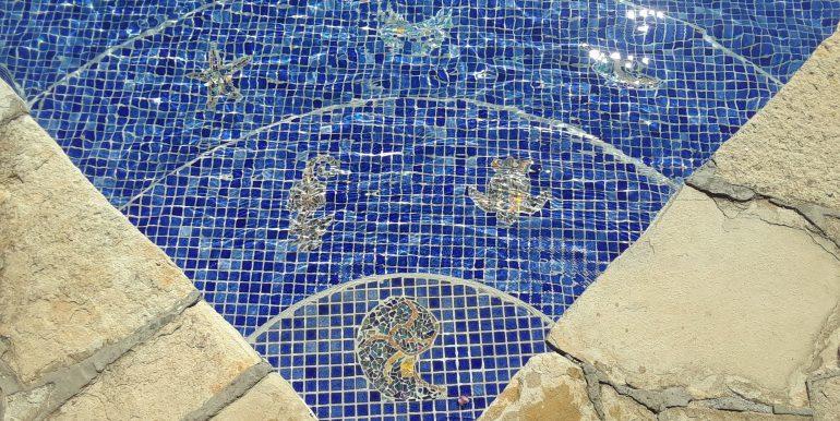 Casa Mariposa pool details