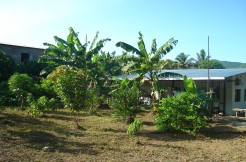 House and Fruit Tree Orchard in Las Delicias
