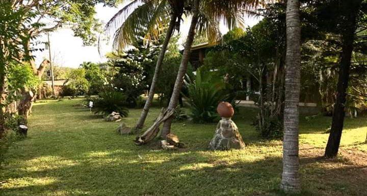 Hotel Gaby Mar trees