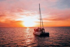 Nica Sail and Surf The Catamaran